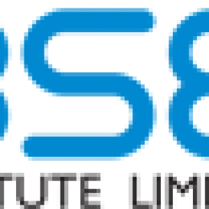 Online Executive Courses - BSE Institite