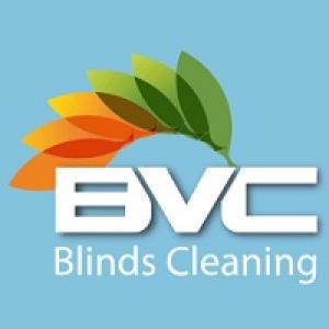 Professional Blind cleaning and its Importance