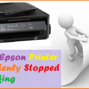 My Epson Printer Suddenly Stopped Working