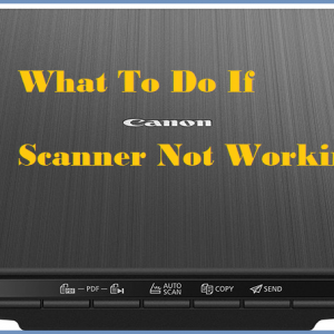 What To Do If Canon Scanner Not Working