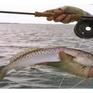 Ultimate Guide To The Fly Fishing Must Haves