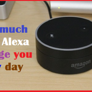 How much does Alexa charge you every day