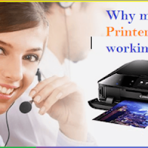 Why my Canon Printer is not working