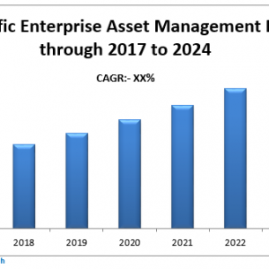 Asia Pacific Enterprise Asset Management Market