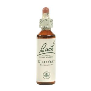 What is the importance of having the Bach Original Flower remedies?