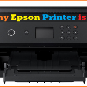 Why my Epson Printer is offline